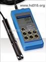 便携式溶解氧测定仪(现货) 型号:H5HI9146N/04
