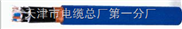 BPVVP2-BPVVP2变频电缆;变频器电缆