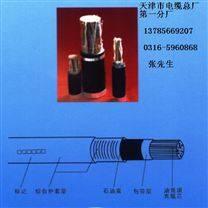聚烯烃绝缘石油膏填充、通信电缆HYAT