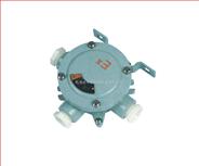 防爆吊灯盒(ⅡB、ⅡC、e) 防爆吊灯盒价格 防爆吊灯盒生产厂家