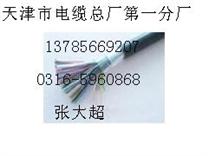 阻燃大对数电线型号 ZR-HYA、ZR-HYAC天联电缆