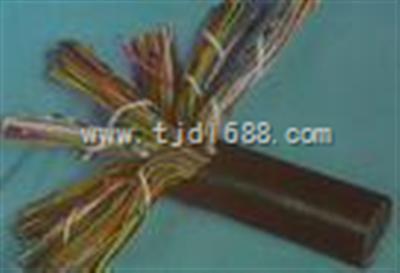 软芯计算机电缆ZR-DJYVRP