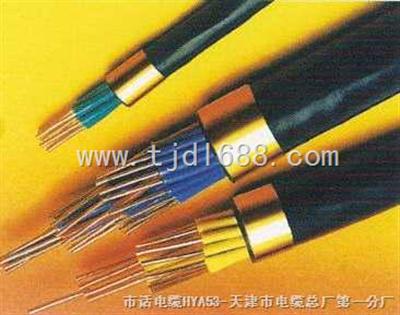 DJYVRP计算机电缆DJYVRP5*2*1.0电缆