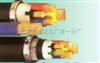 YJV22-0.6/1kV电力电缆