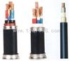 控制电缆-KVVRP【厂家直销】  13131661216