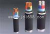 地埋電纜--(YJV22,YJLV22