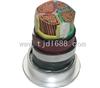 VV VV32电力电缆0.6 1KV