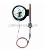 WTZ-280,WTZ-280F压力式温度控制器